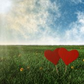 Two wooden hearts with grass, sun and sky background — Stock Photo