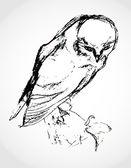 Sketch of an owl — Stock Vector