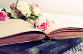 Pink rose on an open old book — Stock Photo
