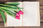 Pink tulips on an open old book — ストック写真