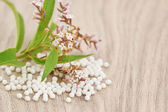 Homeopathic granules scattered on a wooden table — Stock Photo