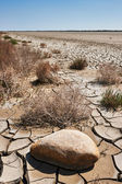 Desertificazione — Foto Stock