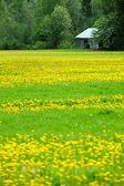 Old hay loft in field — Stock Photo