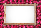 Group of Rose and wood frame — Stock Photo