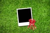 Photo frame on grass — Stock Photo