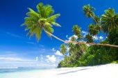 Tropical beach destination — Stock Photo