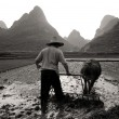 Man is ploughing rice paddy, Guangxi — Stock Photo #52451977