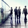Silhouettes of Business People in Blurred Motion Walking — Stock Photo #52453617