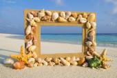 Sea shell sand frame — Stock Photo