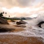 Tropical beach — Stock Photo #52461413