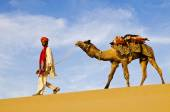 Man walking with his camel — Stock Photo