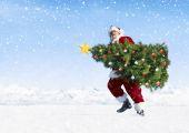Santa claus carrying christmas tree — Stock Photo