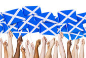 Arms holding Scottish Flags — Stock Photo
