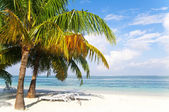 Unpopulated tranquil beach. — Stock Photo