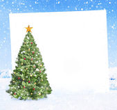 Christmas tree with placard — Stock Photo