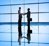 Two Businessmen Handshaking — Stock Photo