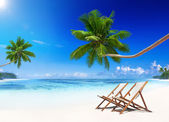 Paradise Beach and Beach Chairs — Stockfoto