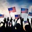 People Waving American Flags — Stock Photo #63088897