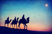 People Riding Camels — Stock Photo