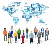 Natural Resources Environmental Conservation Sustainability — Stock Photo