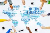 Natural Resources Environmental Conservation — Stock Photo