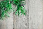Pine branch on a wooden boards — Стоковое фото