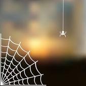 Sky blurred defocused landscape background with cobweb and spider — Cтоковый вектор