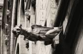 Gargoyle Sacre Coeur — Stock Photo