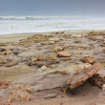 Rocky shore skeleton coast Namibia — Stock Photo #66052751