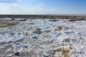 Endless salt pan Botswana, Kubu Island, Africa — Stock Photo