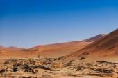 Deadvlei valley Sossuvlei Namibia — Stock Photo