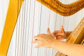 Close up hands playing celtic harp — Stock Photo