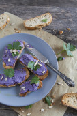 Bruschetta crunch with purple cabbage cream and sunflower seeds on plate — Stock Photo