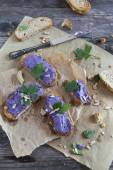 Bruschetta crunch with purple cabbage cream  and sunflower seeds on rustic background — Stock Photo