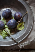 Whole purple prunes with branches and leafs on vintage silver plate — Stock Photo