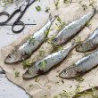 Fresh sardines raw fish with coarse salt and thyme on brown paper on rustic wooden vintage white table with rust scissor — Stock Photo #57297095