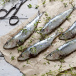 Fresh sardines raw fish with coarse salt and thyme on brown paper on rustic wooden vintage white table — Stock Photo #57297209