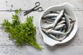 Fresh raw sardines on enamelled tray withparsley bouquet on rustic background with rust vintage scissor — Stock Photo