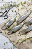 Fresh sardines raw fish with coarse salt and thyme on brown paper on rustic wooden vintage white table with rust scissor — Stock Photo