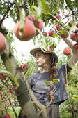 Young pretty farmer woman with plait and straw hat who sniff a fresh peach from tree — Stock Photo