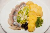 Appetizer, salad, tasty food, appetite — Stock Photo