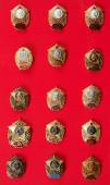 Badges, cadet badges — Stock Photo
