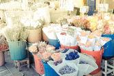 Flower market with sun light — Stock Photo