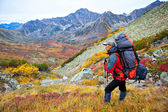 Backpacker in a mountains — Stock Photo