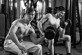 Cvičení v tělocvičně — Stock fotografie