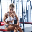 Sportive woman doing exercise with dumbbells — Stock Photo #73276249