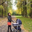 Young smiling mum walks with pram in the aurumn yellow park — Stock Photo #54176565