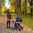 Young smiling mum walks with pram in the aurumn yellow park — Stock Photo #54176581