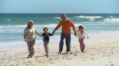 Grandparents and their grandchildren — Stock Video