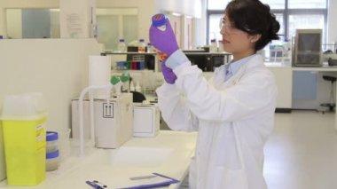 Scientist looking at liquid in laboratory — 图库视频影像